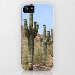 A Cacti in the Desert iPhone Case