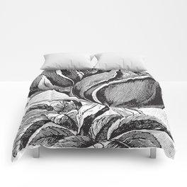 Vintage Rose Buds Comforters