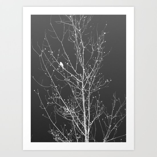 Modern Winter Art Print