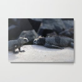 Exhausted Iguanas Metal Print