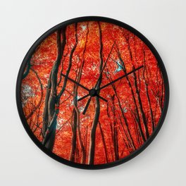 Red Forest of Sunlight Wall Clock