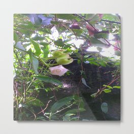 Tiny Orchid Metal Print