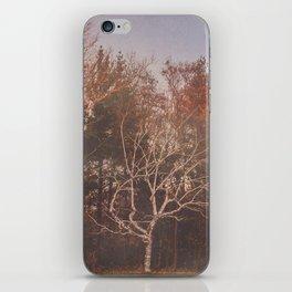 vintage tree iPhone Skin