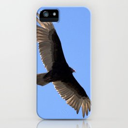 Watercolor Bird, Turkey Vulture 01, Janes Island, Maryland, What Smells? iPhone Case