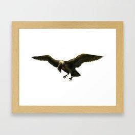 Vintage Vulture Framed Art Print