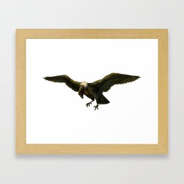 Vintage Vulture Framed Art Print