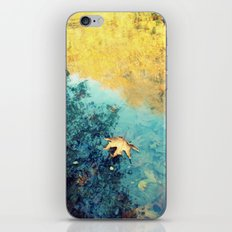 fallen iPhone & iPod Skin