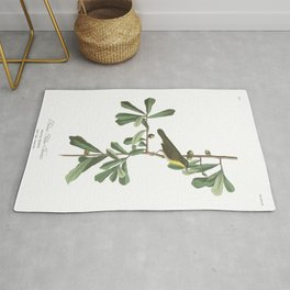 Roscoe s yellow throat, Birds of America, Audubon Plate 24 Rug