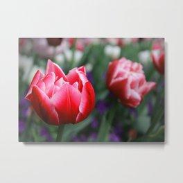Flower_3 Metal Print