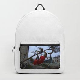 Redberry Backpack