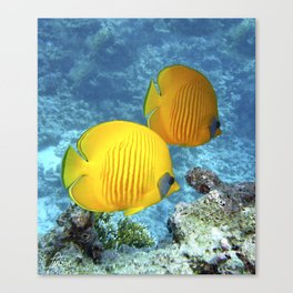 2 Tropical Fish Canvas Print