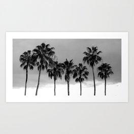 Tropical Darkroom #160 Art Print
