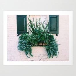 charleston green and white Art Print