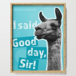 I said, Good day, Sir! (turquoise) Serving Tray