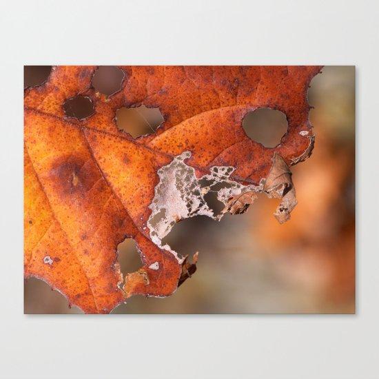 leaf II Canvas Print