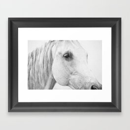 Horse Photography | Wildlife Art | Farm animal | Horse Eye Closeup | Animal Photography Framed Art Print