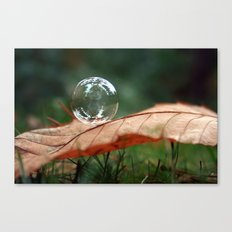 Leaf Bubble Canvas Print