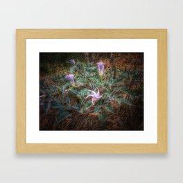 Late Bloomers Framed Art Print