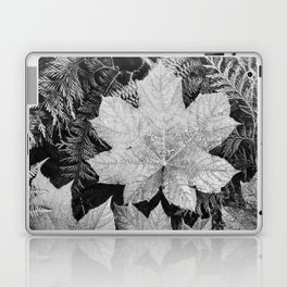 Ansel Adams - Leaves Laptop & iPad Skin