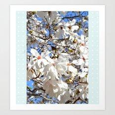 Spring Dogwoods Art Print