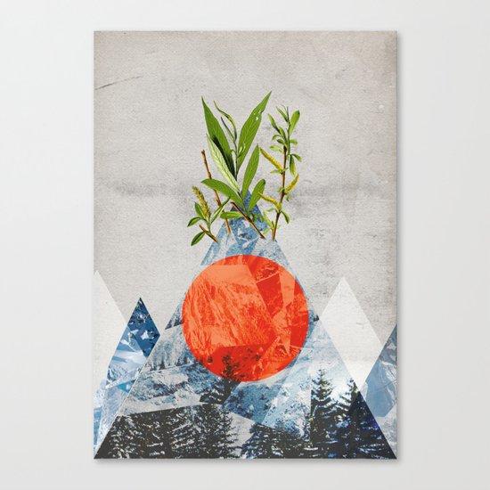 Navrhbrdavrbamrda Canvas Print