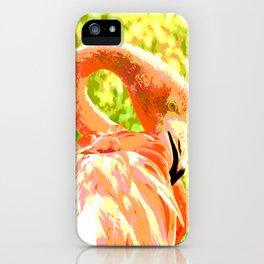 Flamingo illustration versus illustrated flamingo iPhone Case