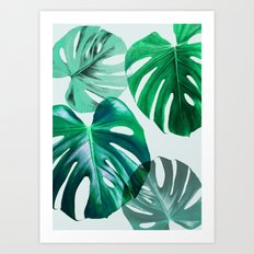 Monstera 1 Art Print