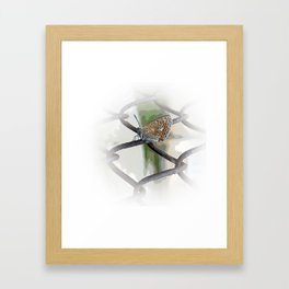 butterfly on fence Framed Art Print