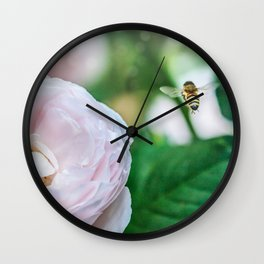 Busy bee in a rose garden Wall Clock