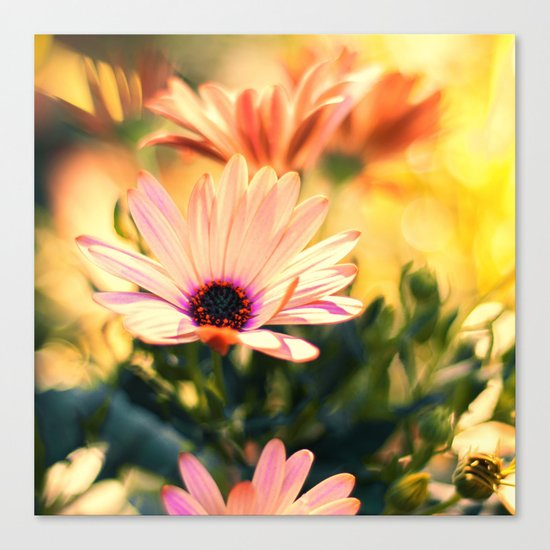 A Piece of Summer Canvas Print