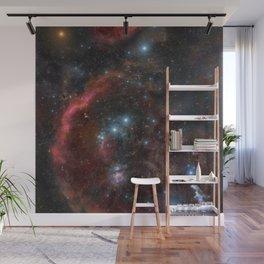 Orion Molecular Cloud Wall Mural