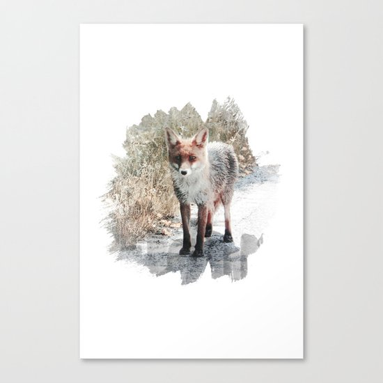 How I met a Fox Canvas Print