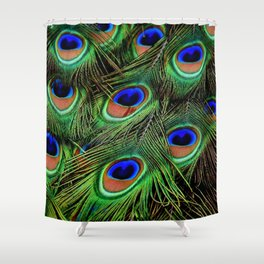Beautiful photograph of peacock feathers Shower Curtain