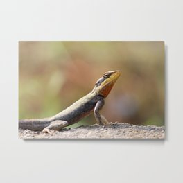Out In The Sun Metal Print