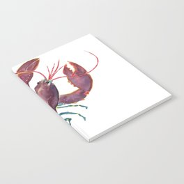 Lobster Notebook