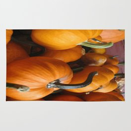 Vector Style Harvest Of Pumpkins Rug