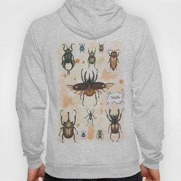 Beetles study Hoody