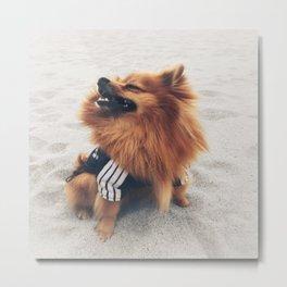 Beach Life Pomeranian Metal Print