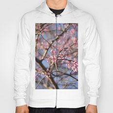 Spring is right around the Corner Hoody