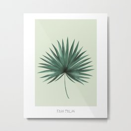 Fan Palm Leaf Metal Print