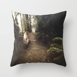 Adventure Ahead Throw Pillow