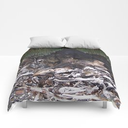 Giant Driftwood Root ball Comforters