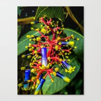 chemistry Canvas Prints featuring Chemistry by Jonathan Ramanujam