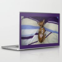 chihuahua Laptop & iPad Skins featuring chihuahua by Lab&co