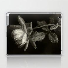 Voluptuous Panic II Laptop & iPad Skin