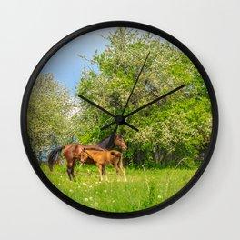 Foal Horse Baby Wall Clock