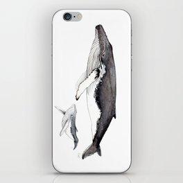 North Atlantic Humpback whale with calf iPhone Skin