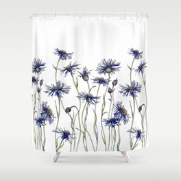 Blue Cornflowers, Illustration Shower Curtain