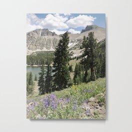 Nevada Summer Wildflowers Metal Print