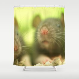 Sweet Rats... Shower Curtain
